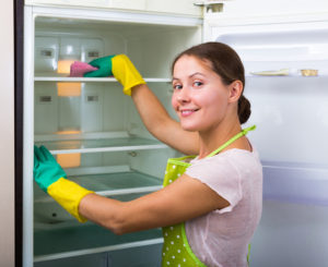 Young smiling woman in apron and in rubber gloves dusting and polishing fridge parts
